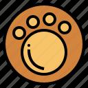 animal, bear, explore, hunting, trail