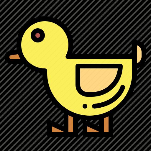 animal, duck, hunt, ornithology icon