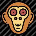 animal, mammal, monkey, wildlife icon
