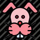 animals, pet, rabbit, wildlife icon