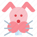 animals, pet, rabbit, wildlife icon
