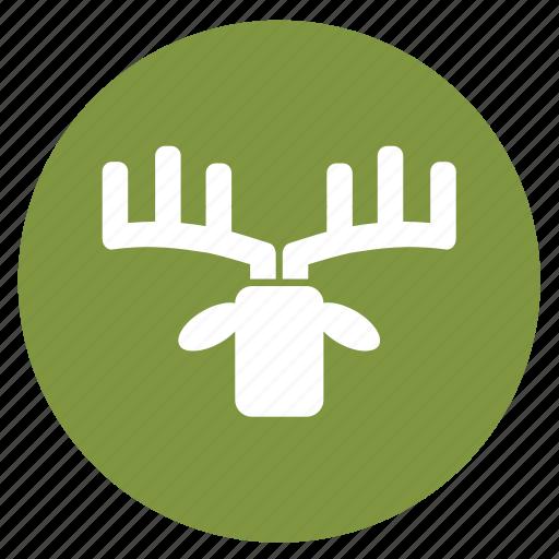 animal, animals, deer, hunting, target, the prey icon