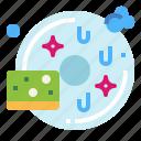cleaning, dish, sponge, wash icon