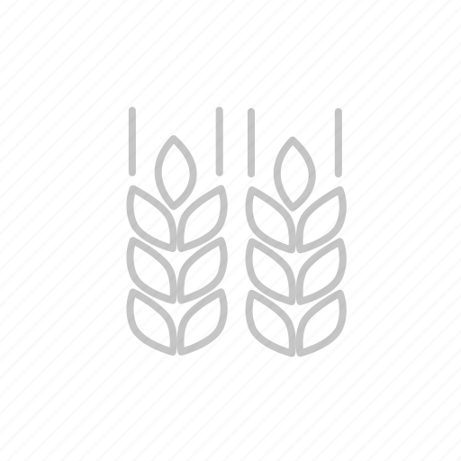 bbq, coocking, corn, food, garden, gluten, grill, hungry, kitchen, party, picnic icon