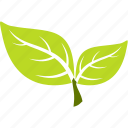 ecology, flora, nature, plant icon