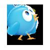 6, bird, twitter icon