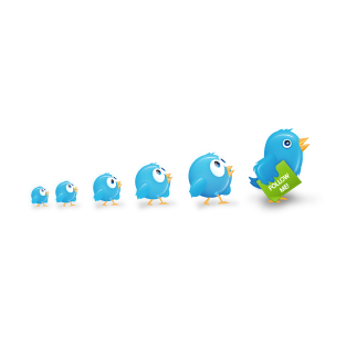 birds, twitter icon