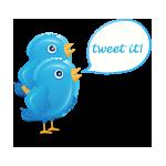 9, bird, twitter icon