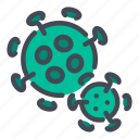 virus, bacteria