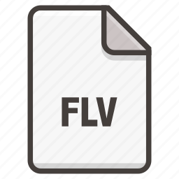document, flash, flv icon