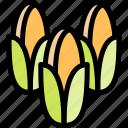 corns, farm, nature, village icon