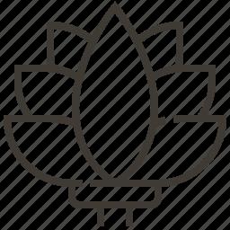 flower, lotus, nature, plant icon
