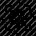 area, chart, circle, flower, pie