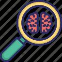 brain exploring, brain processing, brain scanning, brain screening, mri icon