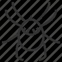 acari, animal, bug, insect