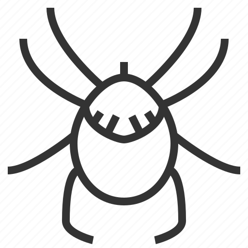 acari, animal, bug, insect icon