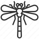 animal, bug, dragonfly, insect icon