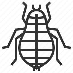 animal, bug, flea, insect icon