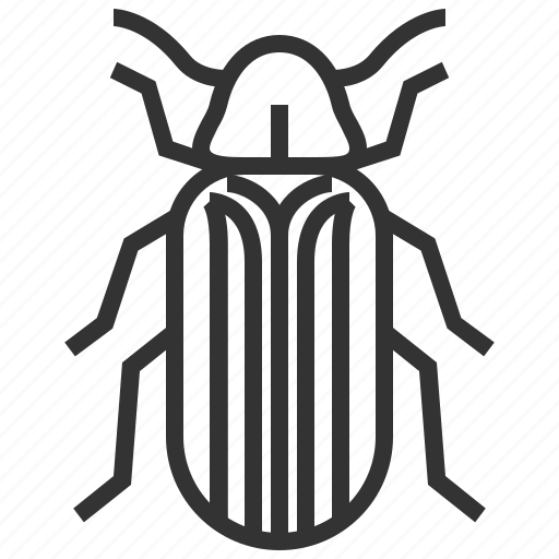 beetle, bug, furniture, insect icon