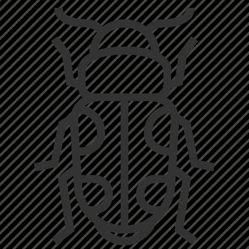 animal, beetle, bug, insect, sap icon