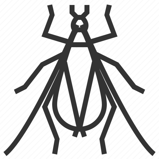 bug, cricket, insect, tree icon