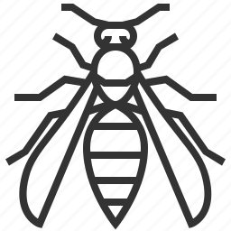 animal, bug, insect, wasp icon