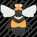 bumblebee, entomology, garden, pollinator, sting