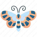 butterfly, glasswing, invertebrate, transparent, wing icon