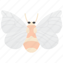 animal, butterfly, insect, moth, silkworm icon