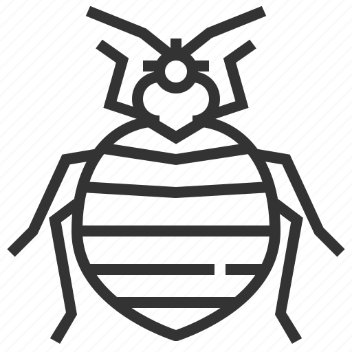 animal, bedbug, bug, insect icon