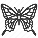 animal, insect, machaon, papilio icon