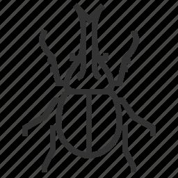 animal, beetle, bug, insect, rhino icon