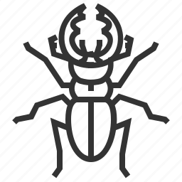 beetle, bug, insect, stag icon