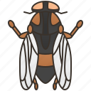 gadfly, horsefly, insect, pest, sting icon