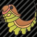 cerura, invertebrate, moth, puss, vinula icon