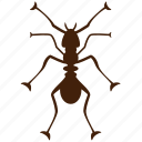 ant, black ant, fire ant, formic, insect, insect pests, insecticide icon