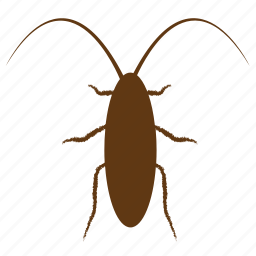 bug, cockroach, cockroaches, insect, insect pests, insecticide icon