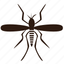 bug, insect, insect pests, insecticide, mosquitoes
