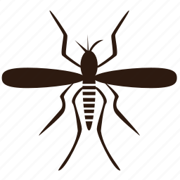 bug, insect, insect pests, insecticide, mosquitoes icon