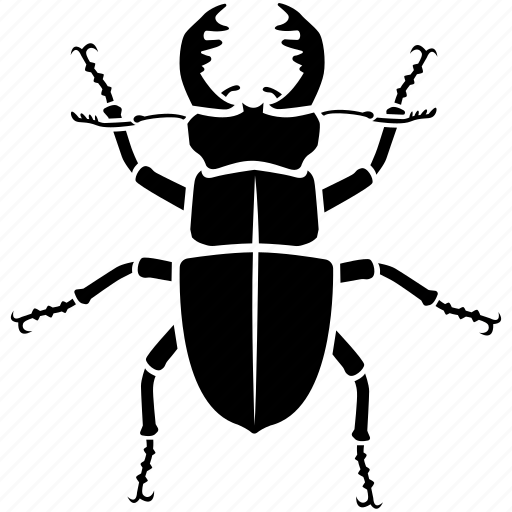 beetle, bug, fighting, insect, large, lucanus, stag icon