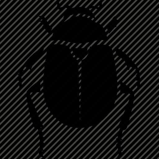 beetle, bug, dung, egypt, egyptian, ra, scarab icon