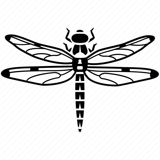bug, damselfly, darter, dragonflies, dragonfly, flying, insect icon
