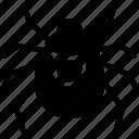 acari, acarina, mite icon