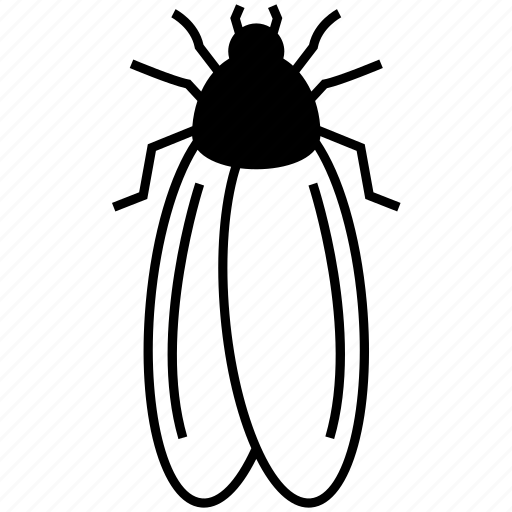 Bug, insect, sandfly icon - Download on Iconfinder