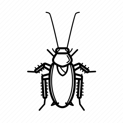 cheap, cockroach, house, killer, repel, repellent, roach icon