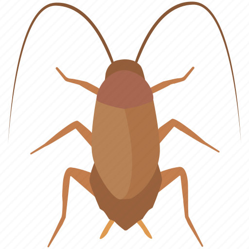cockroach, control, exterminator, insect, pest, roach, spray icon
