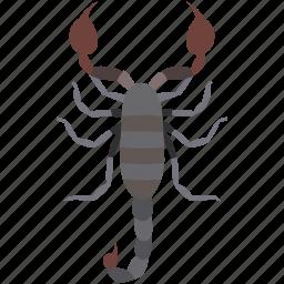 animal, arachnid, deadly, scorpio, scorpion, serket, tattoo icon