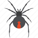 australian, dangerous, deadly, red stripe, redback spider, venomous icon