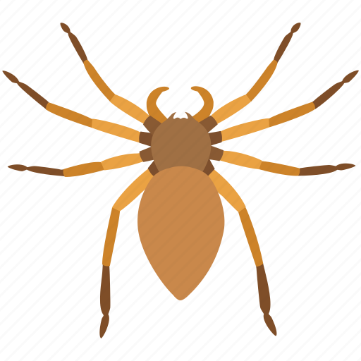 giant crab, halloween, huntsman, rain, scary, spider, wood icon