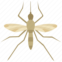 disease, midge, mosquito, mosquitoes, pest, repellent, spray icon